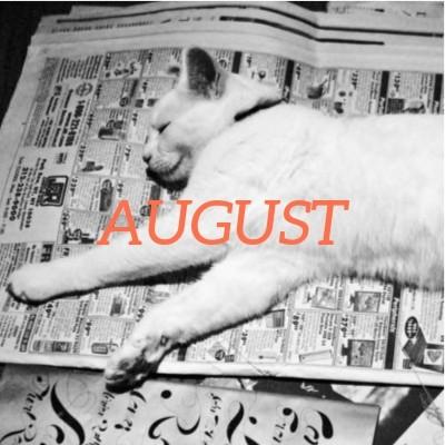Photo of cat lying on newspaper