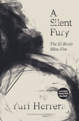 A Silent Fury book cover
